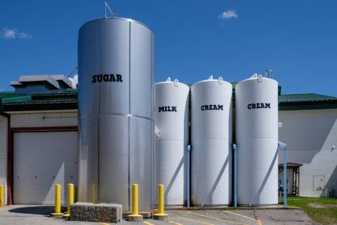 Sugar, milk, and cream containers